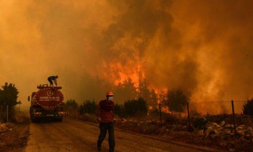 ไฟป่าในตุรกี ทำให้เกิดความหายนะ